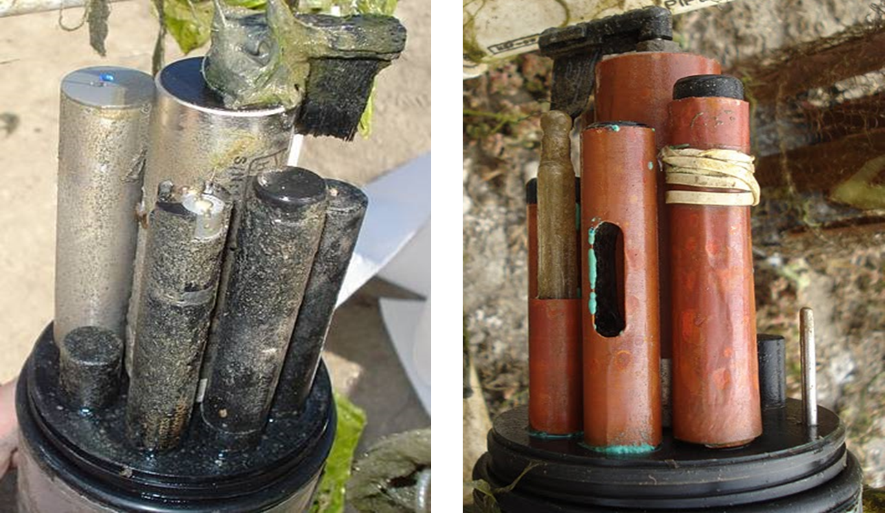 Sensors fouled after deployment (L) vs. sensors deployed with copper tape (R)
