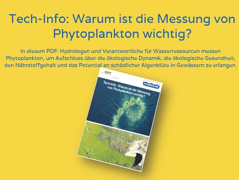 Phytoplankton-1